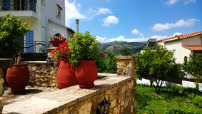 The decoration on Greek street - large bright clay flower pots and geraniums in it. Stock Image