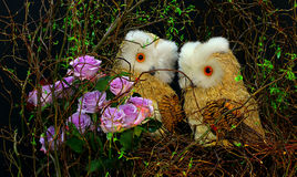 Decoration with handmade owl figures Stock Photos