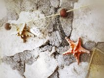 Hanged starfishes and fishing net on wall stock image