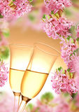 Decoration from hyacinth and champagne flutes Stock Images