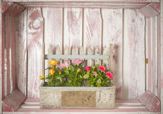 Decoration inside crate Royalty Free Stock Photos