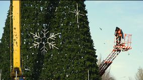 Decoration of a large urban Christmas tree. Workers on the crane install and decorate the Christmas tree stock footage