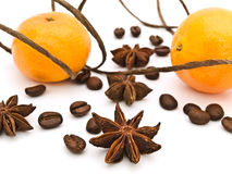Decoration with mandarins Stock Image