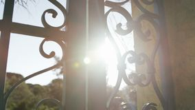 Doors with forged elements. Decoration of metal gate with beautiful forged elements stock video
