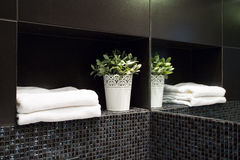 Decoration in modern bathroom. Pretty white decoration in new modern black bathroom stock photography
