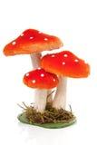Decoration mushrooms Royalty Free Stock Photos