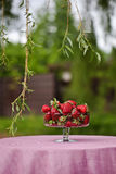 Decoration. Outdoor Birthday decoration with strowberries Stock Photos