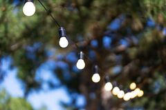 Decoration for an outdoor party. A garland of light bulbs hanging between the trees