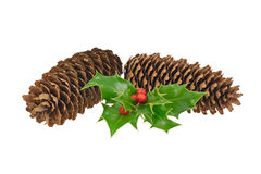 Pine Cones and Holly. Decoration of Pine cones and Holly Royalty Free Stock Image