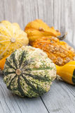 Decoration with pumkins Stock Image