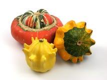 Decoration pumpkin Stock Image
