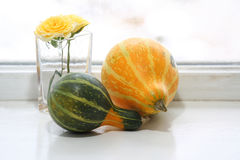 Decoration pumpkin in front of the window Royalty Free Stock Images