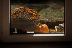 Decoration with a pumpkin by the window. Royalty Free Stock Photos