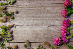 Decoration with red clover flowers like a frame on wooden background Royalty Free Stock Photo