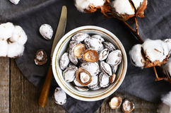 Decoration with salty apricot pits and cotton flowers Royalty Free Stock Photo