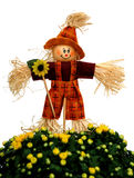 Decoration of scarecrow and mum flower Stock Photos