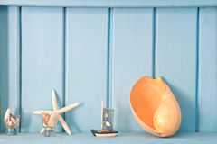 Decoration with shell, Stock Photography