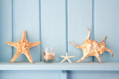 Decoration with shellfish, Stock Photography