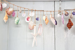 Decoration with shellfish, Stock Image