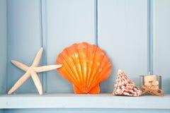 Decoration with shellfish. Beach style decoration Royalty Free Stock Image