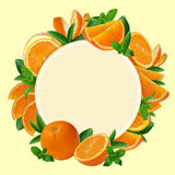 Decoration of sliced fresh orange around banner. Stock Photos