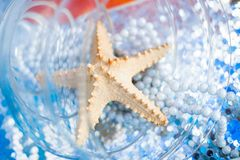 Decoration with starfishes Stock Images