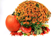 Decoration for Thanksgiving Day Stock Image
