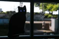 Decoration of the window of the cat and the spider. The view of the decoration of the window of the room of a cat and a spider Royalty Free Stock Images