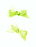 Decorational bow isolated Stock Images
