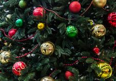Decorations on Christmas trees royalty free stock image