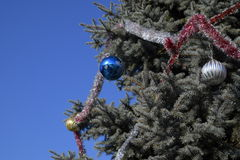 Decorations New Year tree. Tinsel and toys, balls and other decorations on the Christmas Christmas tree standing in the open air Royalty Free Stock Images
