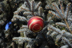 Decorations New Year tree. Tinsel and toys, balls and other decorations on the Christmas Christmas tree standing in the open air Stock Images