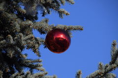 Decorations New Year tree. Tinsel and toys, balls and other decorations on the Christmas Christmas tree standing in the open air Royalty Free Stock Photos