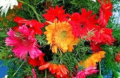 Decorativ wiązka colourful kwiaty obrazy stock