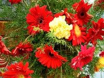 Decorativ wiązka colourful kwiaty obrazy royalty free