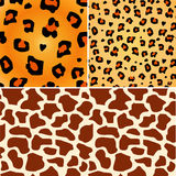 Decorative african background. Stock Photo