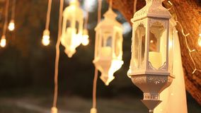 Decorative antique edison style filament light bulbs hanging in the woods, glass lantern, lamp decoration garden at stock video footage