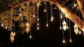 Decorative antique edison style filament light bulbs hanging in the woods, glass lantern, lamp decoration garden at stock footage