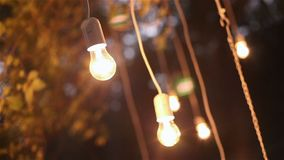 Decorative antique edison style filament light bulbs hanging in the woods, glass lantern, lamp decoration garden at stock video