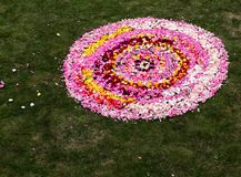 Arrangement of flowers and petals from the center and forming a larger circle. A decorative arrangement of flowers and petals from the center and forming a stock image
