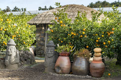 Decorative artifacts outside a traditional Korean house in a folk village. Oranges tree growing outside house at a village Stock Photography