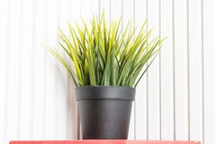 Decorative artificial potted plant, grass in flowerpot. Plastic but rearistic, is not a real flower for which you do not need to. Care for stock photo