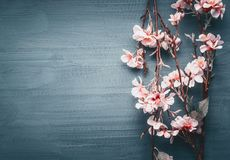 Decorative artificial spring blossom on dark blue background. Top view, border stock image
