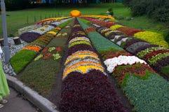 Decorative artistic flower-bed. In flower exhibition in Kiev, Ukraine Stock Photo