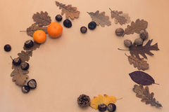 Decorative autumn border with chestnuts, walnuts, and leaves Royalty Free Stock Image