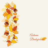 Decorative Autumn branches Stock Photography