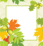 Decorative autumn frame. With leaves. Illustration Royalty Free Stock Photos