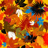 Decorative autumn graphic Stock Image