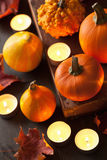 Decorative autumn halloween pumpkins and candles Royalty Free Stock Photography