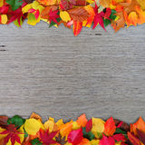 Decorative autumn leaves background Royalty Free Stock Images